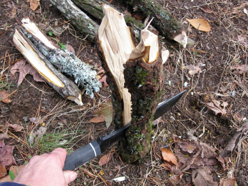 "SOG Creed splitting tree trunk (Photo:""mistwalker"" - bladeforums)"